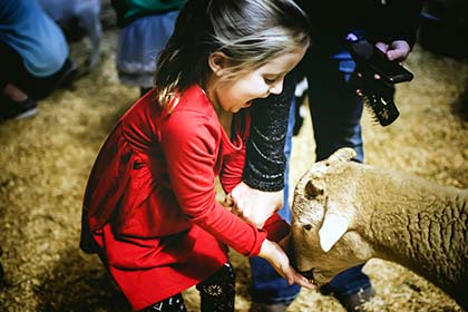 A girl feeding one of the goats at the Sights & Sounds petting zoo